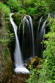 image of spearfishing  - Roughlock Falls in Spearfish Canyon South Dakota - JPG