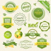 Vector Organic Food, Eco, Bio Labels and Elements. Vector illustration.