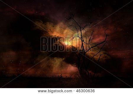 Stark árvore silhueta contra o céu noturno