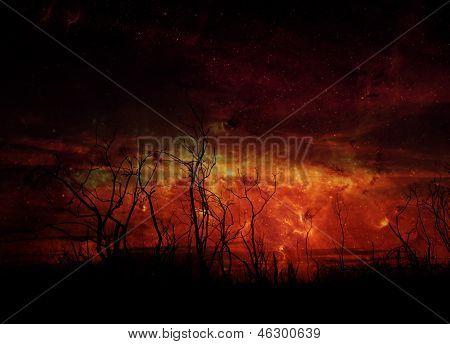 Stark Tree Silhouette Against Night Sky