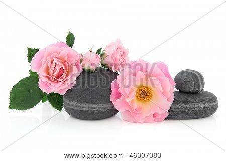 Pink rose flower arrangement with grey pebbles over white background. Carefree days variety.