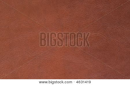 Texture- Leather