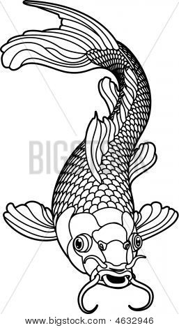 Koi Carp Black And White Fish