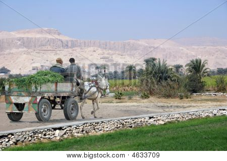 Cart On The West Bank