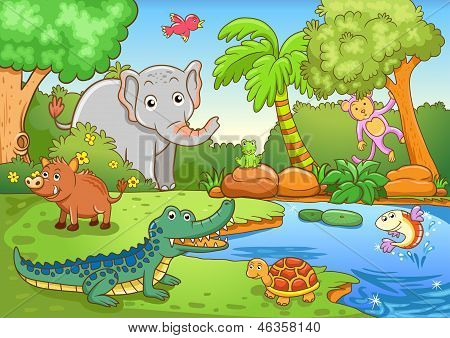 animals in forest