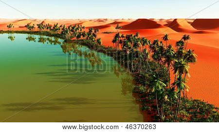 Beautiful natural background - African oasis