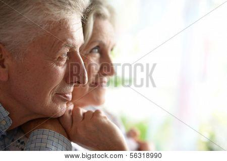 Portrait of a happy senior couple.