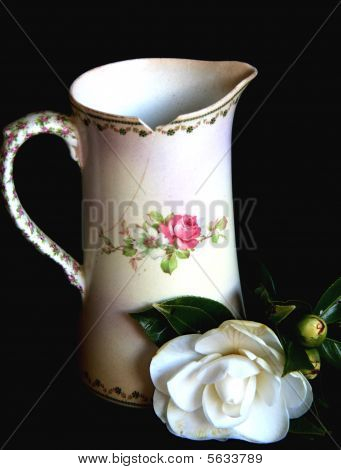 Antique Jug and Camellia