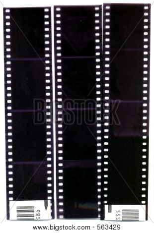 Scan Of Negative Strips
