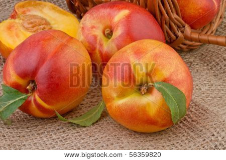 pêssego ou nectarina em fundo de serapilheira