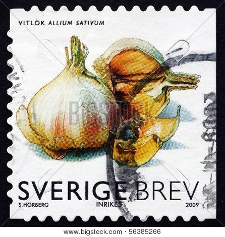 Briefmarke Schweden 2009 Knoblauch, Gemüse