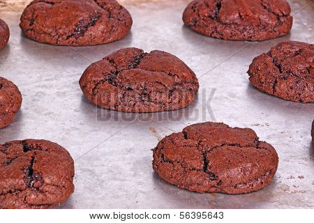 Freshly Baked, Home-made Chocolate Cookies Still On The Pan