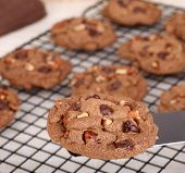 image of pecan  - Chocolate chip and pecan cookie on a spatula - JPG