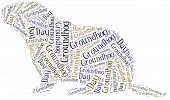 pic of groundhog  - Tag or word cloud Groundhog Day related in shape of groundhog - JPG