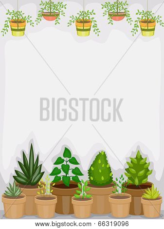 Background Illustration of a Greenhouse Housing Different Types of Plants