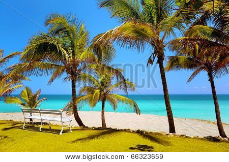beach in Varadero, bench in the sand