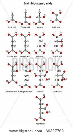 Structural Chemical Formulas Of Basic Bioorganic Acids (rounds And Sticks)