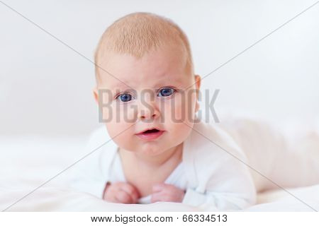 Portrait Of Cute Infant Baby, Two Months Old