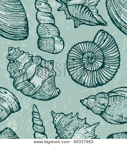 Sea shell seamless background.