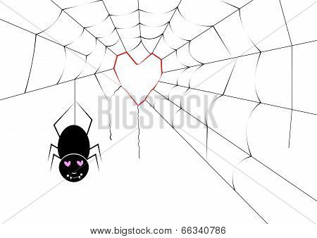 Spider Making A Heart Web
