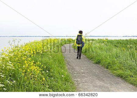Walking along the IJsselmeer in the Netherlands in springtime