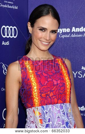 LOS ANGELES - JUN 7:  Jordana Brewster at the 13th Annual Chrysalis Butterfly Ball at Private Mandeville Canyon Estate on June 7, 2014 in Los Angeles, CA
