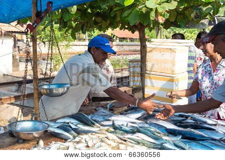 HIKKADUWA, SRI LANKA - FEBRUARY 23, 2014: Local street vendor selling fish. The Sunday market is a fantastic way to see Hikkaduwa's local life come alive along with fresh produce and local delicacy.