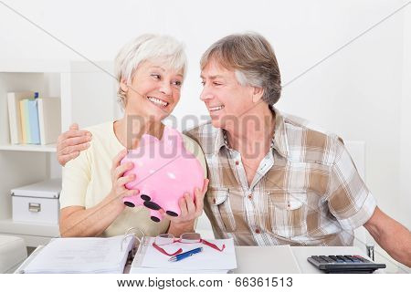 Senior Couple Saving Money