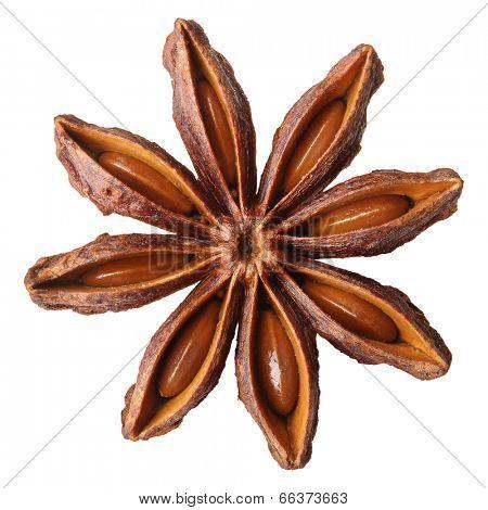 Anise star, badiane spice isolated on white background