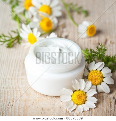 container with cream and chamomiles on wooden background