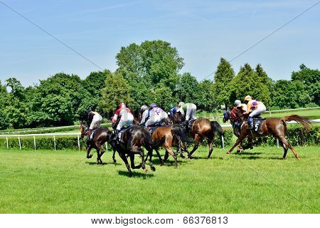 WROCLAW, POLAND - JUNI 8: President's Day at the track Partenice, race for 3-year-old horses only group III in Wroclaw on Juni 8, 2014. Race wins horse Zucchero with the number 2.