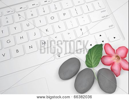 Flower, leaf and stone for massage on the keyboard