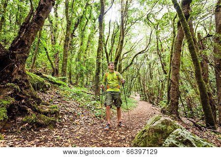 Hiker Walking Trekking In Green Forest