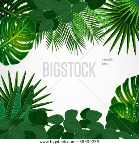 Tropical leaves. Floral design background.