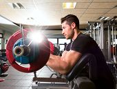 image of preacher  - biceps preacher bench arm curl workout man at fitness gym - JPG