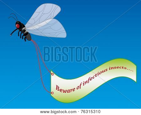 Fly with advertising banner