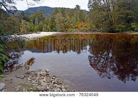 The Oparara River Near Karamea, New Zealand
