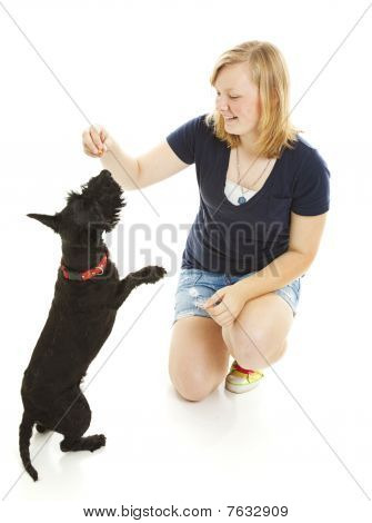 Girl And Dog Do Tricks