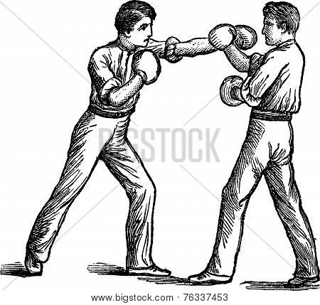 Two Boxers Boxing Vintage Engraving