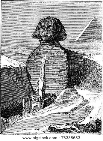 Great Sphinx Of Giza In Giza Egypt Vintage Engraving