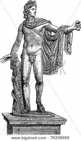 Apollo Belvedere Or Apollo Of The Belvedere In Vatican City Vintage Engraving