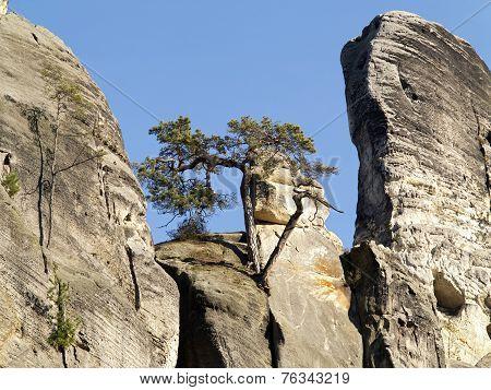 Bohemian Paradise - Rocks