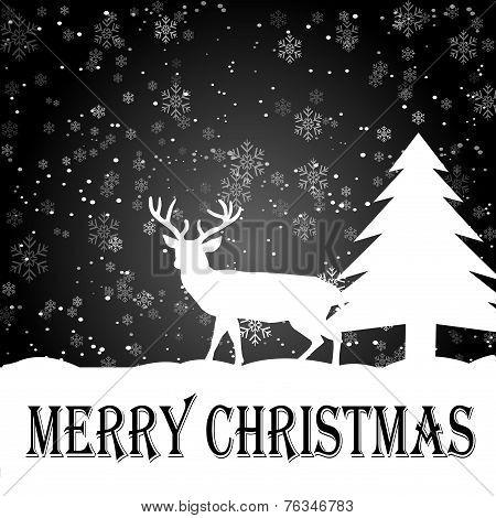 Night Snow-Merry Christmas