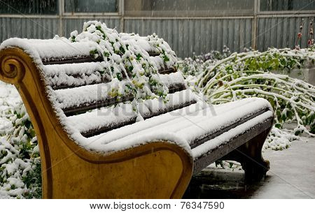 Old Style Bench In Snowfall