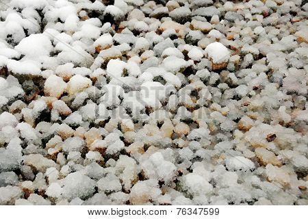 Gravel Covered With Snow