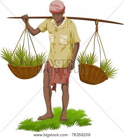 Vector Of Street Vegetable Seller.