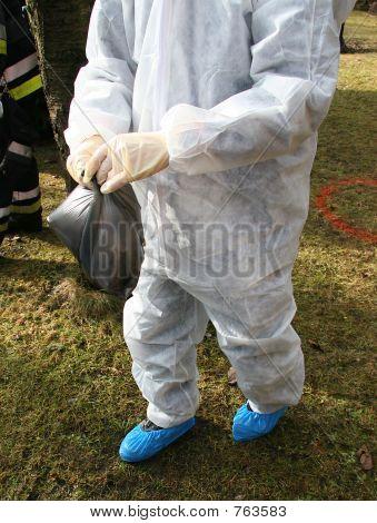 Bird flu danger 2