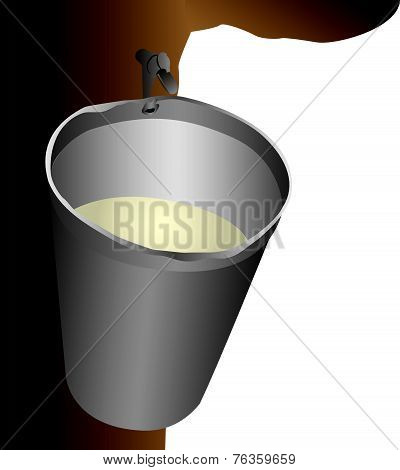 Maple Water Bucket