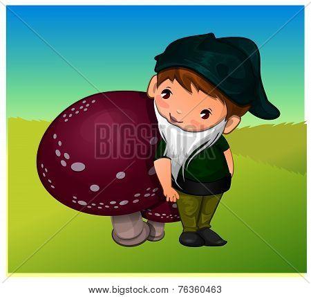 Gnome, Illustration