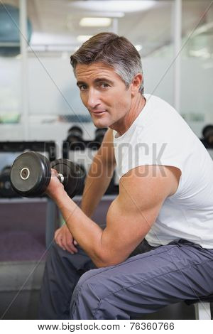 Fit man lifting dumbbells sitting on the bench at the gym